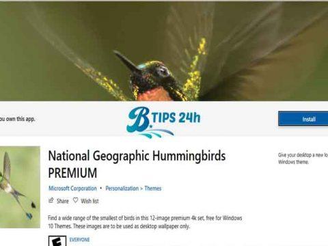 National Geographic Hummingbirds Premium 4K giao dien