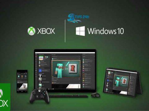 loi dang nhap xbox windows 10