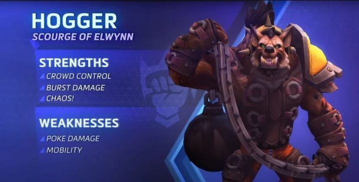 Hogger Heroes trong The Storm Norm 1