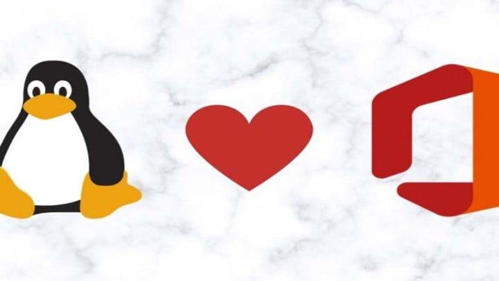 Hướng dẫn cách cài đặt Office trên Linux bằng WinApps