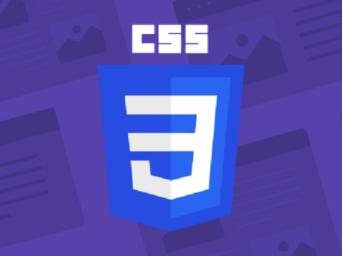 3 cach them css vao wordpress