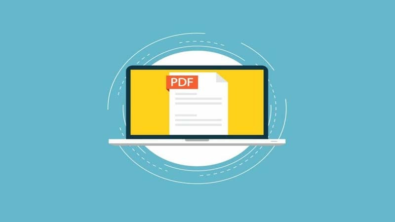 Cách sửa lỗi This document is trying to access PDF error